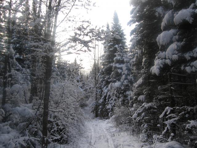 Dec09-099