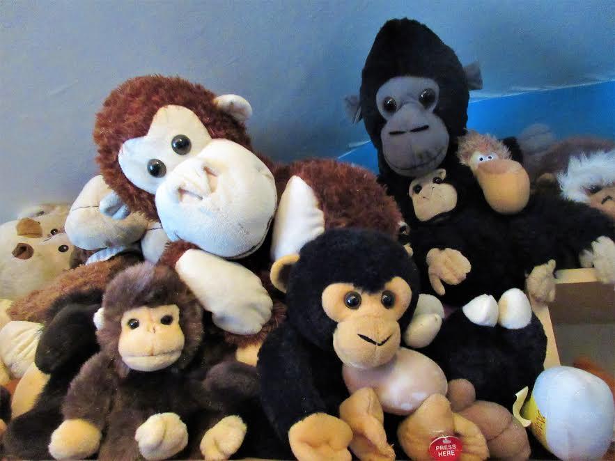 Monkey Clan